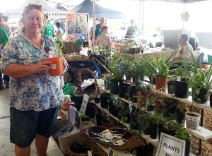 Gympie Plant and lifestyle Expo day 1