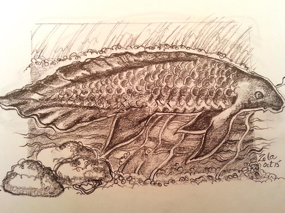 zela-bissett-fish