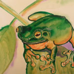 zela-bissett-green-tree-frog-01