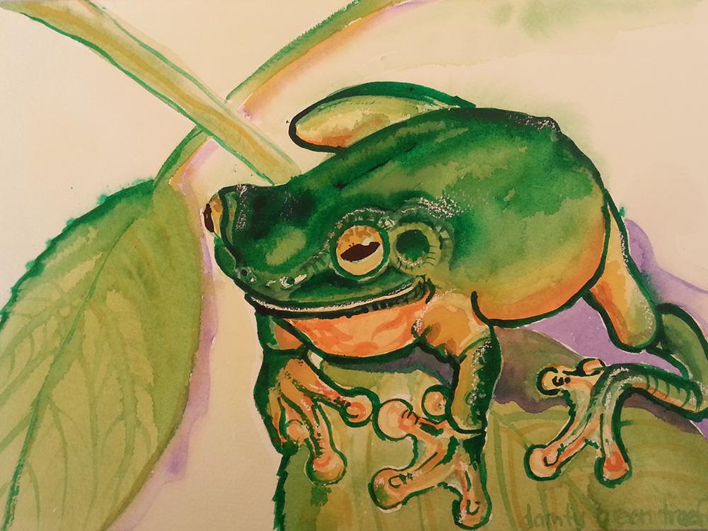 zela-bissett-green-tree-frog-01