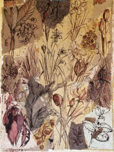 botanical Beauties panel 1